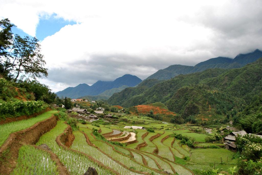 Tarasy ryżowe Wietnam 2